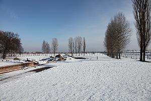 Auschwitz Gunvor Hofmo Ruth Maier 11