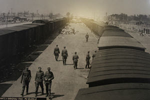 Auschwitz Gunvor Hofmo Ruth Maier 15