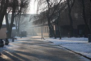 Auschwitz Gunvor Hofmo Ruth Maier 16